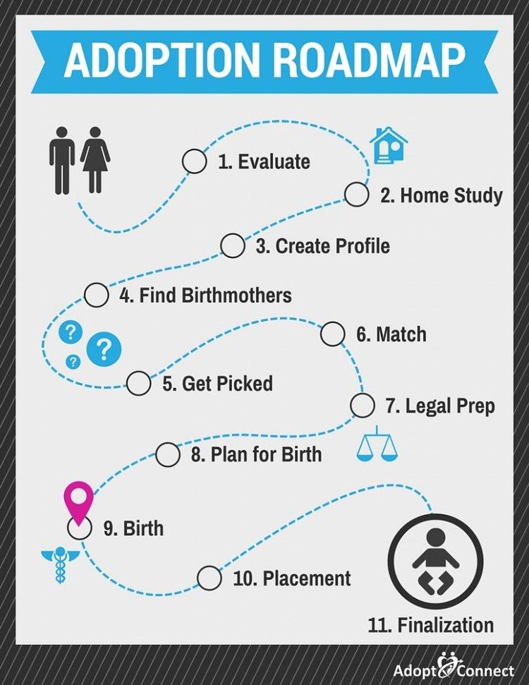 Adoption Roadmap-Birth