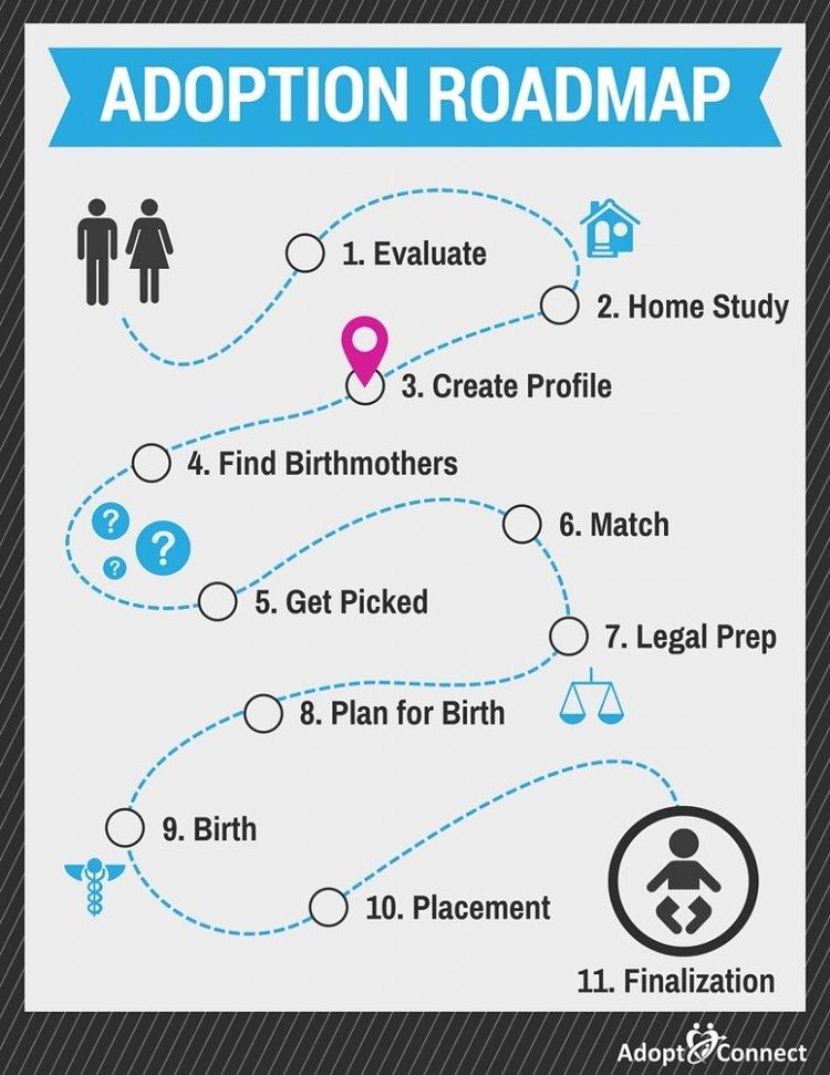 Adoption Roadmap-Create Profile
