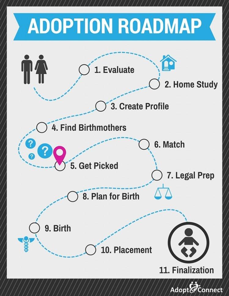 Adoption Roadmap-Get Picked