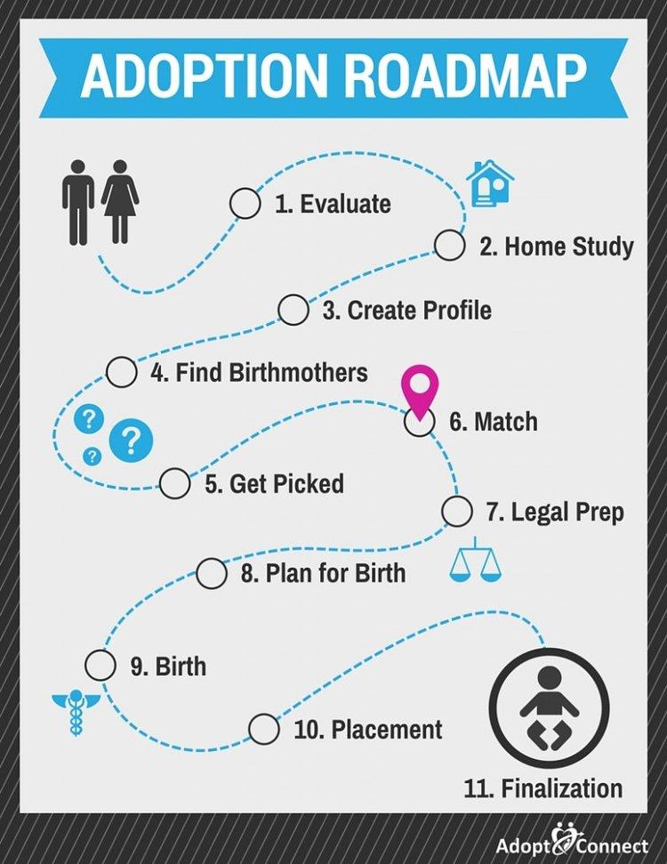 Adoption Roadmap-Match