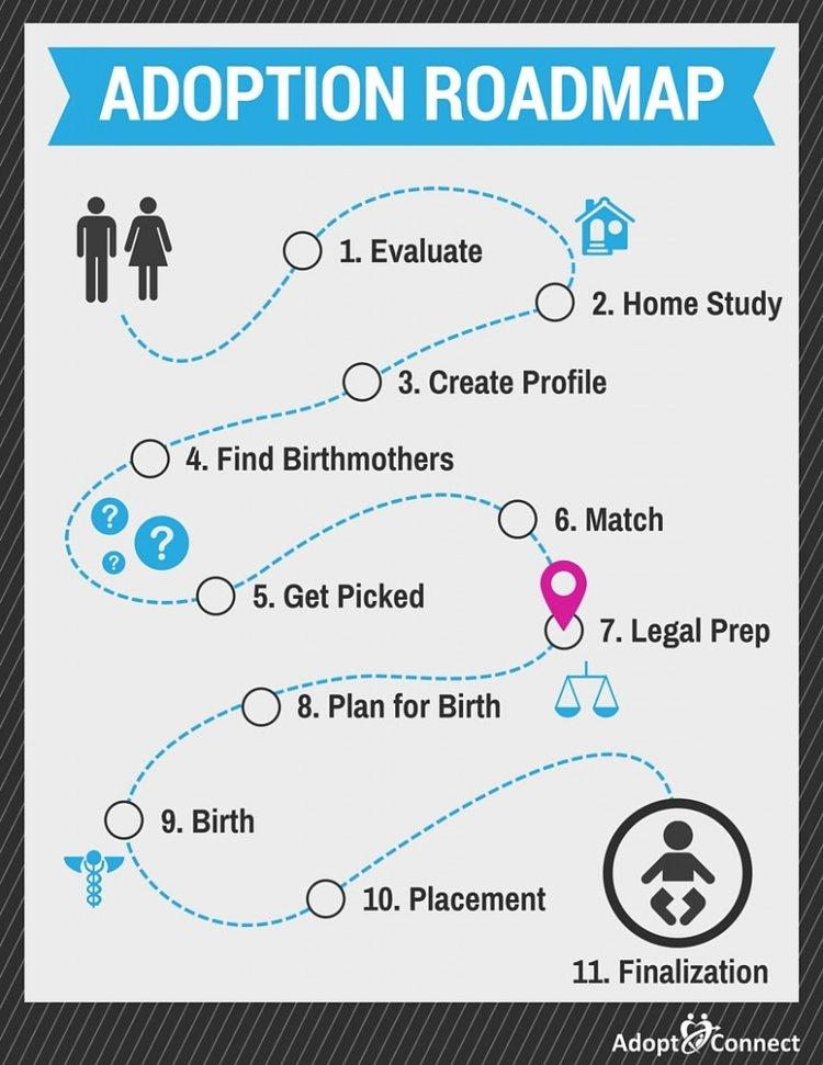Adoption Roadmap-Legal Prep