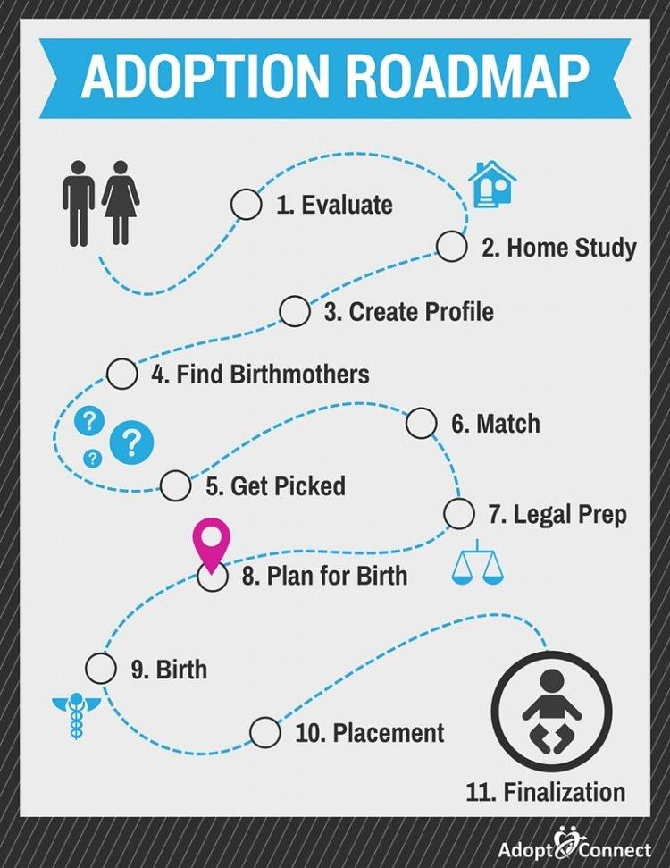 Adoption Roadmap-Plan for Birth